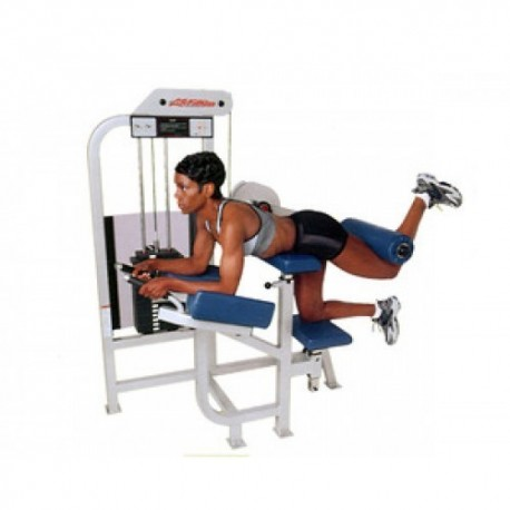 life fitness pro 1 glute machine de musculation fitness occasion. Black Bedroom Furniture Sets. Home Design Ideas