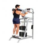 Life Fitness - Pro 1 Mollets Debout Machine de musculation