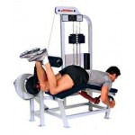 Life Fitness - Pro 1 Leg Curl Allongé Machine de musculation