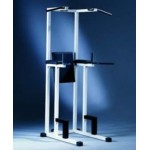 Technogym - Isotonic Abdo Dips Traction Machine de musculation