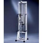 Technogym - Isotonic Hi-low Pulley Adjustable Machine de musculation