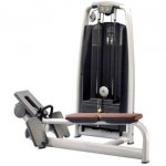 Technogym - Pulley Selection Machine de musculation
