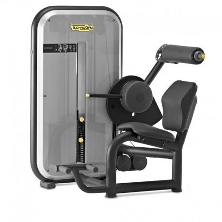 Technogym - Lower Back Element Machine de musculation