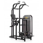 Kneeling Easy Chin Dips Technogym Element