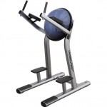 LEG RAISE LIFE FITNESS SIGNATURE SERIES