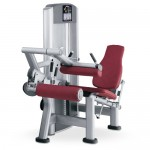 LEG CURL ASSIS LIFE FITNESS SIGNATURE OCCASION