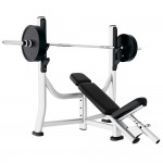BANC OLYMPIQUE INCLINE LIFE FITNESS SIGNATURE OCCASION