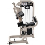 TRICEPS EXTENSION LIFE FITNESS PRO 2 OCCASION