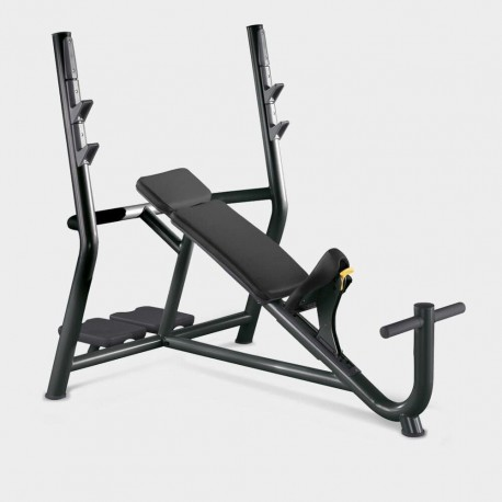BANC OLYMPIQUE INCLINE TECHNOGYM ELEMENT OCCASION