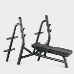 BANC OLYMPIQUE TECHNOGYM ELEMENT OCCASION
