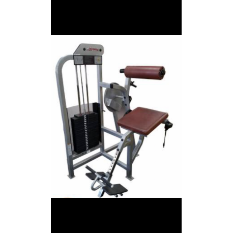 LOWER BACK LIFE FITNESS PRO 1 OCCASION