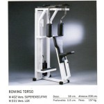 ROWING TORSO TECHNOGYM ISOTONIC OCCASION