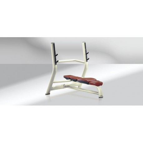 BANC HORIZONTAL TECHNOGYM SELECTION OCCASION