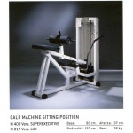 ROTARY CALF TECHNOGYM ISOTONIC OCCASION