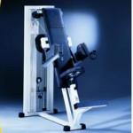 DELTS MACHINE TECHNOGYM ISOTONIC OCCASION