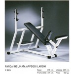 BANC OLYMPIQUE INCLINÉ TECHNOGYM ISOTONIC OCCASION