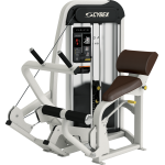 BACK EXTENSION CYBEX EAGLE OCCASION