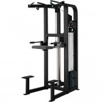 ASSISTED CHIN DIP LIFE FITNESS PRO 2 OCCASION